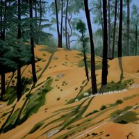 Pine Forest India by Janet Buckle