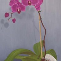 Purple Orchid by Janet Buckle