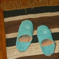 Blue Slippers by Janet Buckle