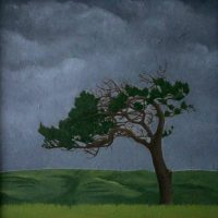 Solitary Tree by Janet Buckle