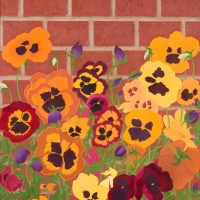 Violas by Janet Buckle 6049